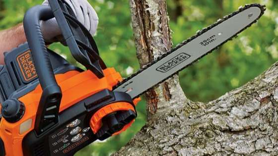 Best Saw for Cutting Christmas Tree